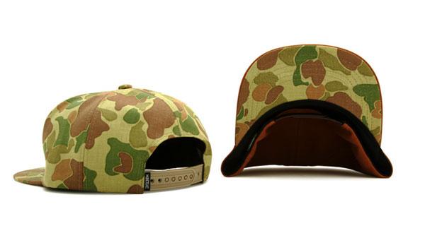 CAP3.jpg