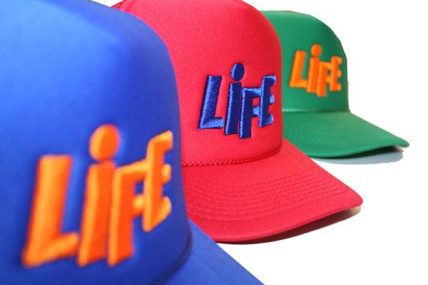lifemeshcap9.10.jpg