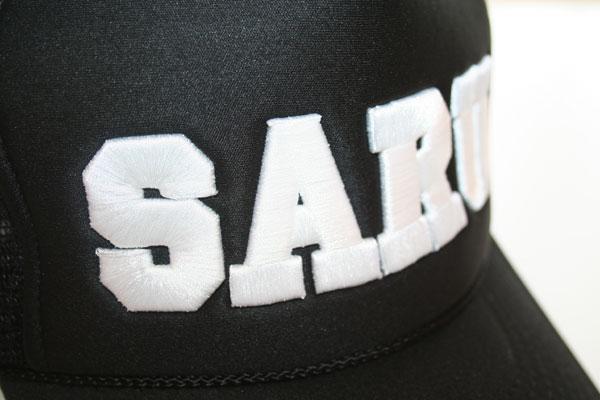 sarumeshcap6.15.jpg